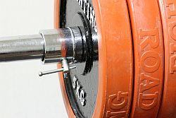 Bankdrücken - das effektive Training für die Brustmuskulatur