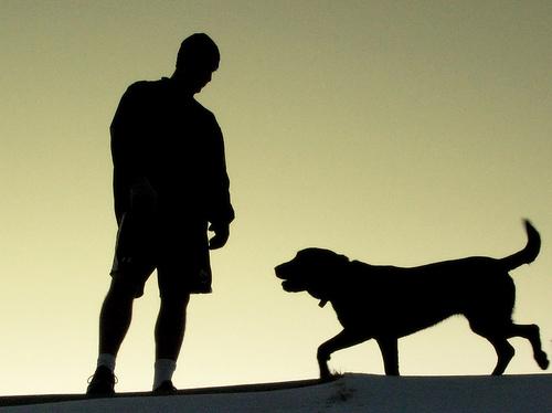 Hund und Jogger - nicht immer beste Freunde © Flickr / OakleyOriginals