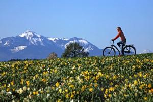 5 Gründe: Darum ist Radfahren so gesund