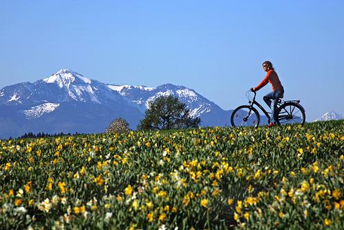 Fahrrad © Chiemgau Tourismus