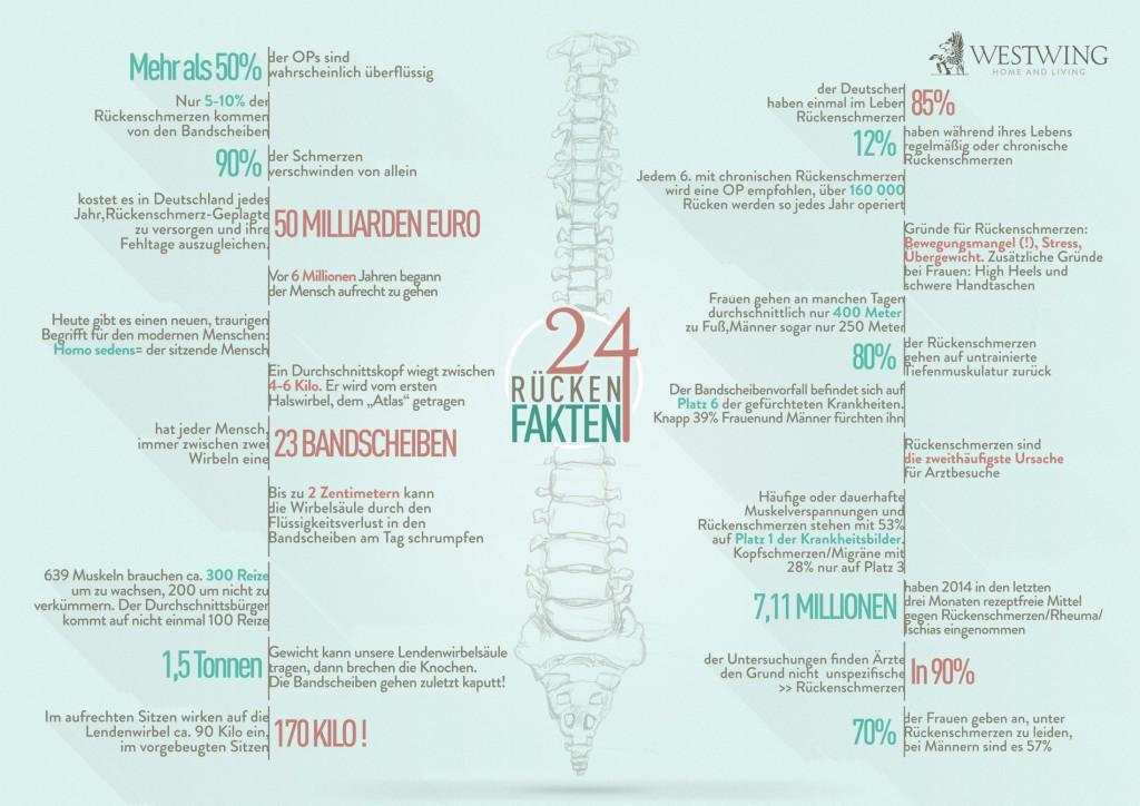 24 Rücken Fakten