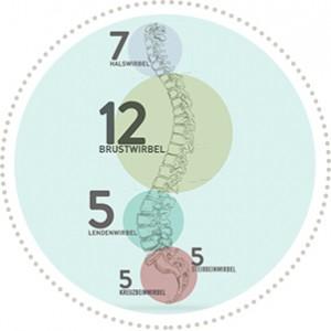 Der gesunde Rücken – ein wichtiges Thema für Jedermann