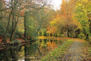 Wandern im Herbst: Das ideale & schonende Fitnessprogramm für Jedermann