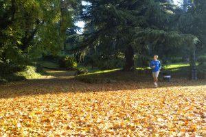 Joggen: Wichtige Tipps fürs Lauftraining im Herbst & Winter